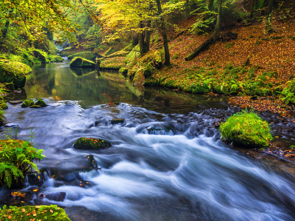 Iphone X Wallpaper Hd Download Beautiful Nature Forest River Wallpapers Hd High