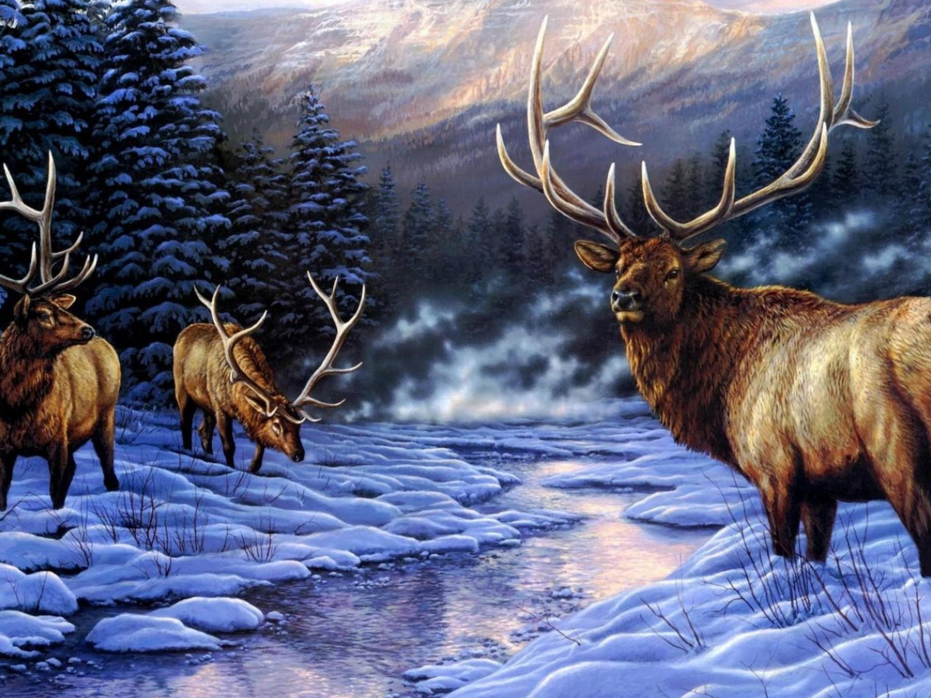 Cute Couple Wallpapers For Lock Screen Deer Artistic Photos With Animal Winter River Snow