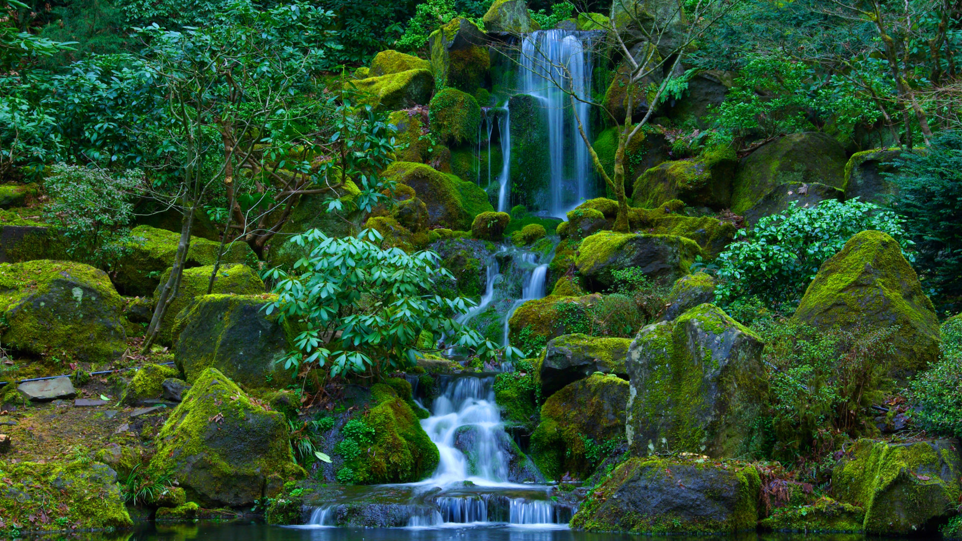 Waterfalls Desktop Wallpaper Forest Falls Portland Japanese Garden Located In Washington Park And