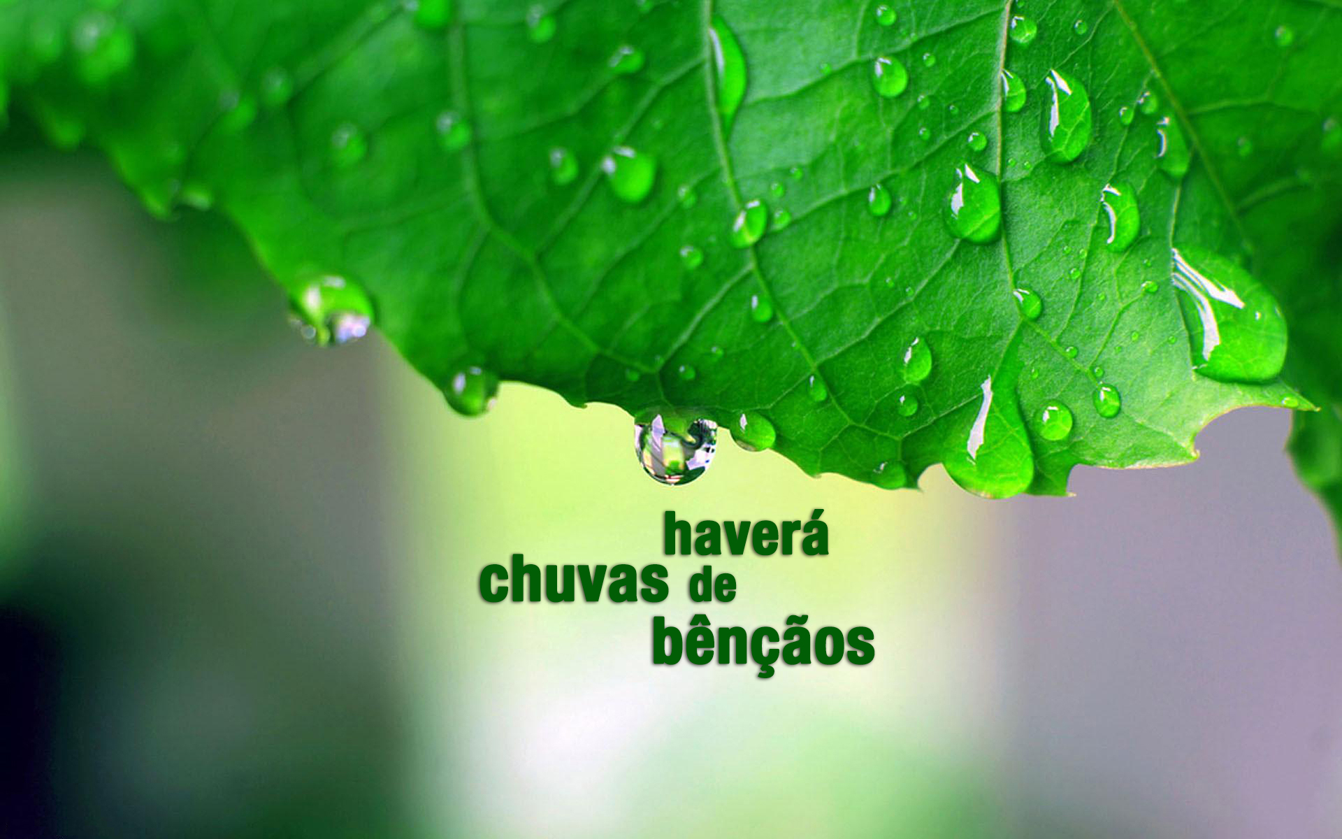Wallpaper Of Love Quotes In English Chuvas De B 234 N 231 227 Os Wallpapers Crist 227 Os