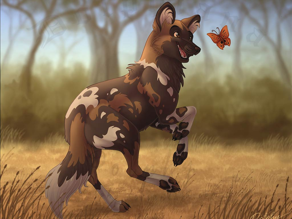 Pretty Anime Girl Wallpaper Download African Wild Dog Wallpaper Gallery