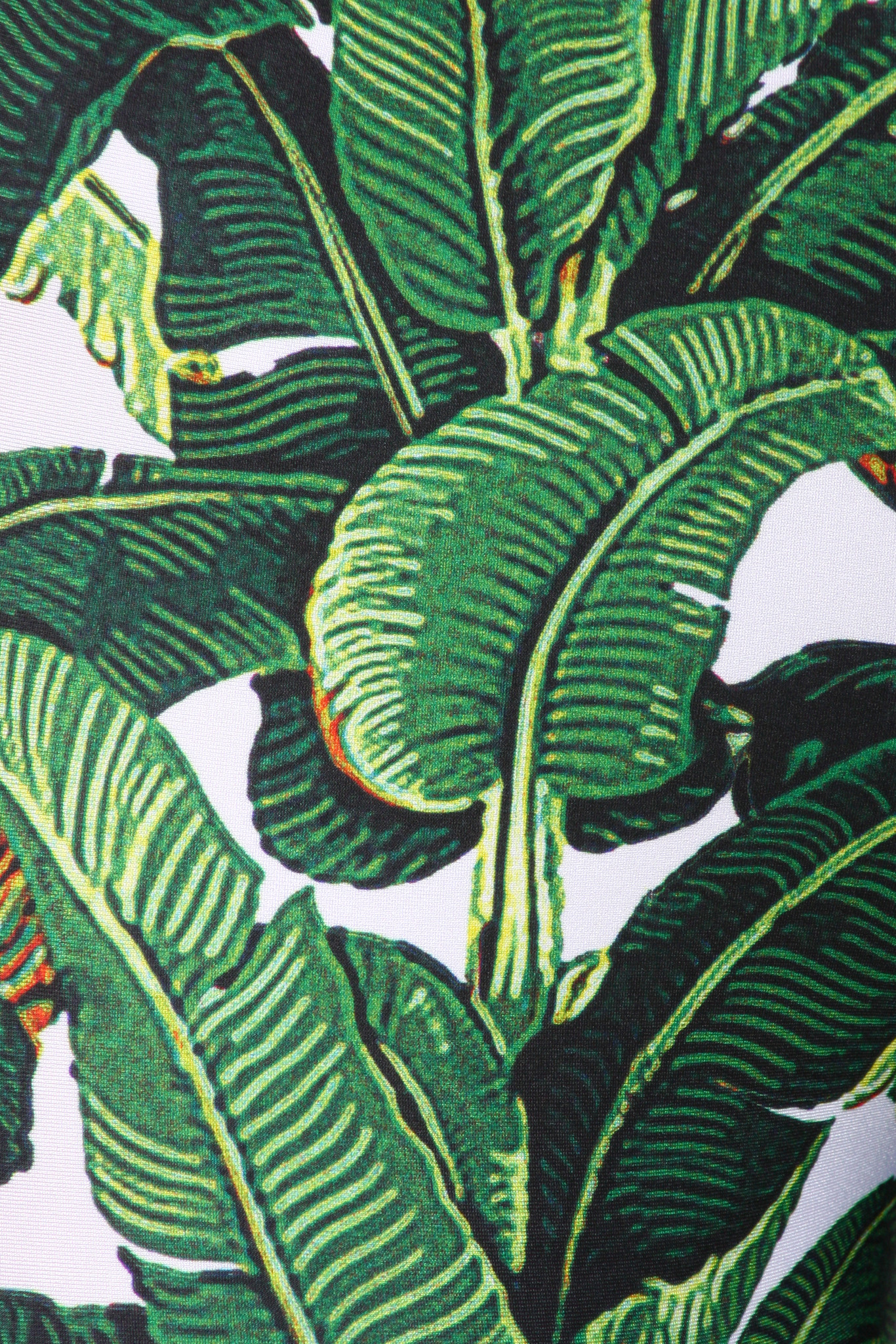 Black And White Floral Wallpaper Download Beverly Hills Banana Leaf Wallpaper Gallery