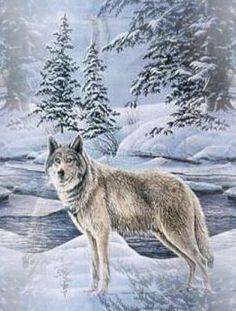 3d Xmas Live Wallpaper Download Christmas Wolf Wallpaper Gallery