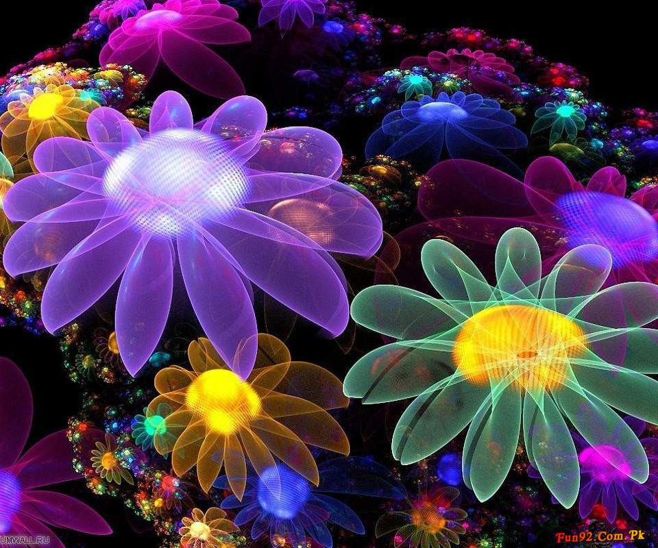 3d Flower Touch Live Wallpaper Download Download Beautiful Wallpaper For Mobile Phone Gallery
