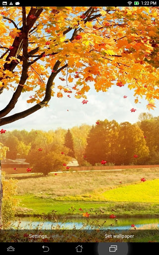 Download Falling Leaves Live Wallpaper Download Gallery