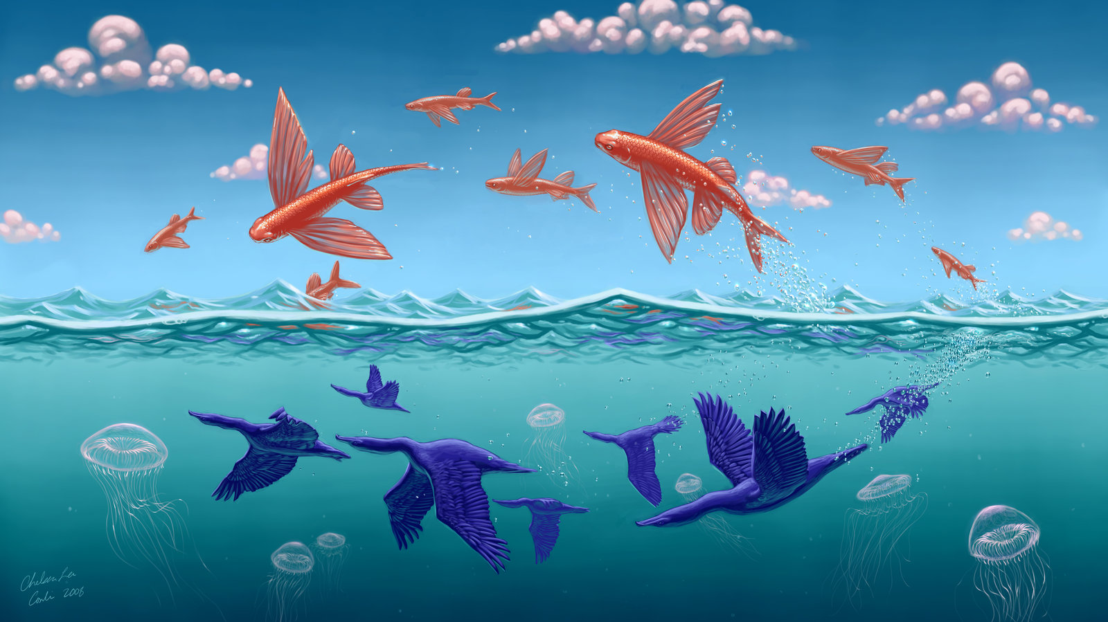 Fish 3d Wallpaper Download Download Flying Fish Wallpaper Gallery