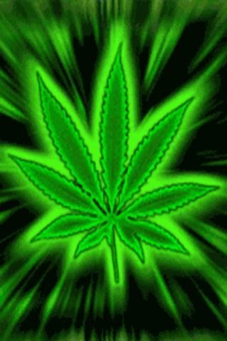 Download Free Weed Live Wallpapers Gallery