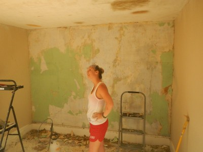 Download How To Paint After Removing Wallpaper Gallery