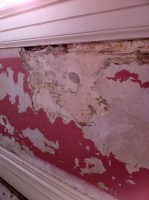 Download How To Remove Wallpaper Glue From Plaster Walls ...