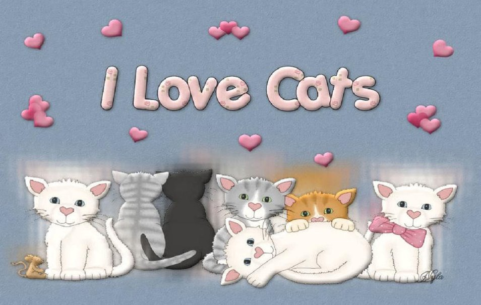 Keep Calm Quotes For Girls Wallpaper Download I Love Cats Wallpaper Gallery