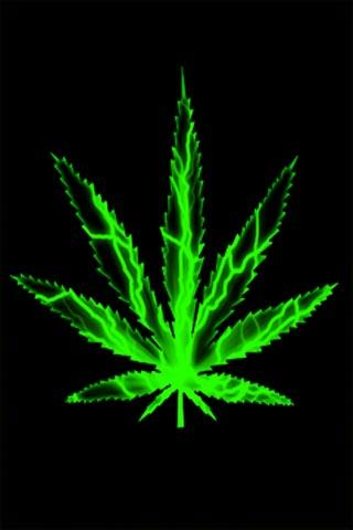 3d Weed Leaf Wallpaper Download Live Weed Wallpaper Gallery