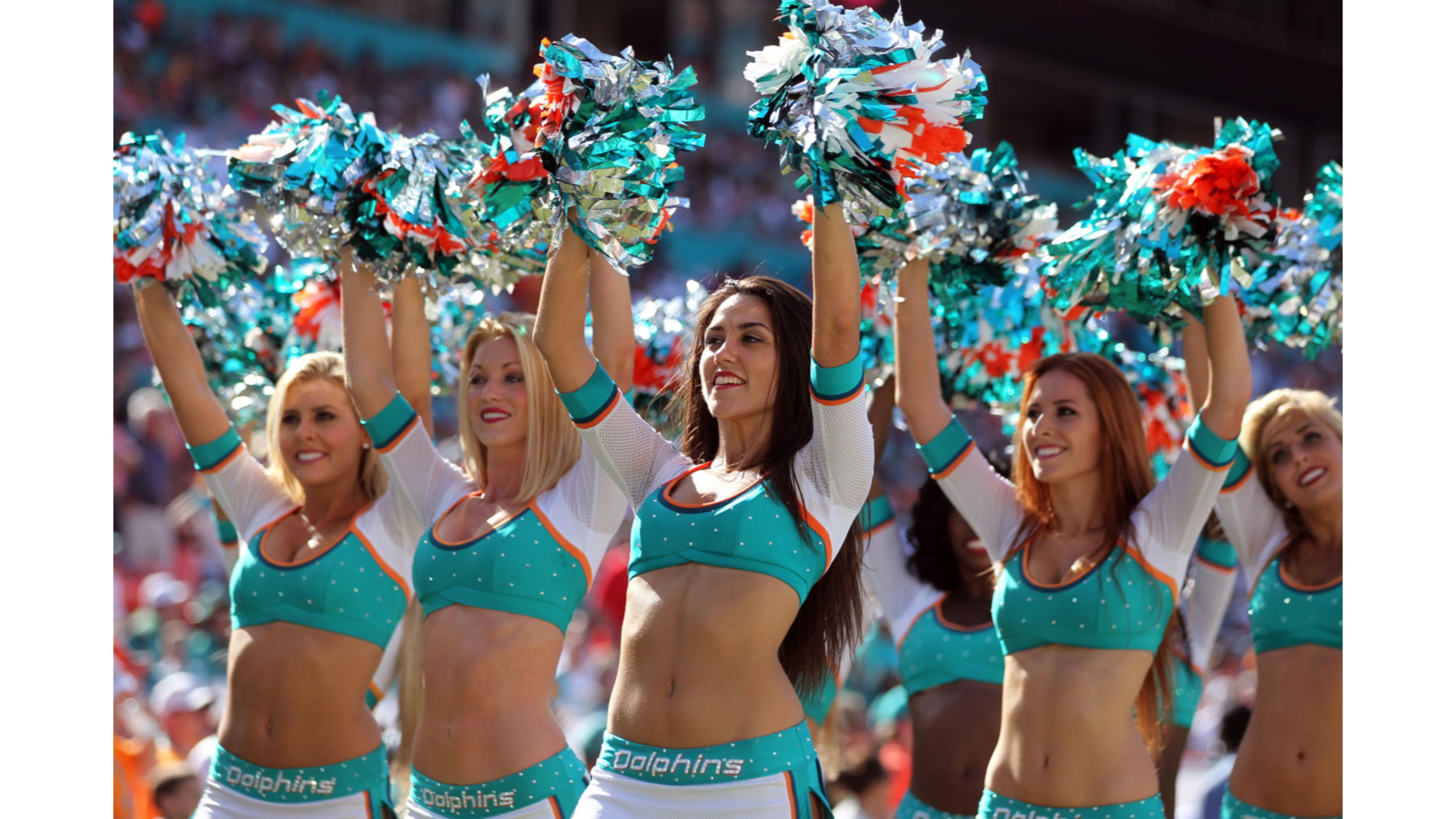 Cute Dolphin Wallpaper Desktop Download Miami Dolphins Cheerleaders Wallpaper Gallery