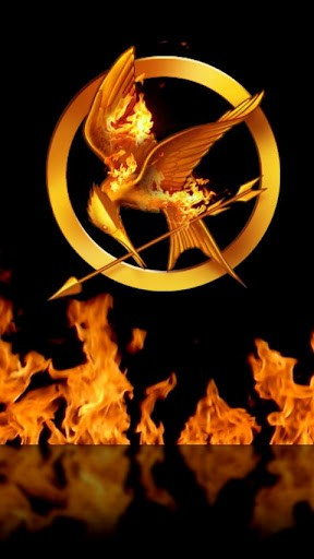 3d Wallpapers For Walls In Karachi Download Mockingjay Live Wallpaper Gallery