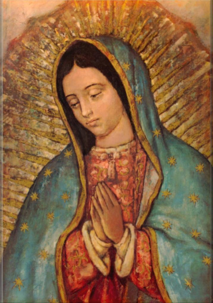 3d Matrix Live Wallpaper Apk Download Our Lady Of Guadalupe Wallpaper Gallery