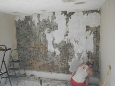 Download Painting Plaster Walls After Removing Wallpaper Gallery