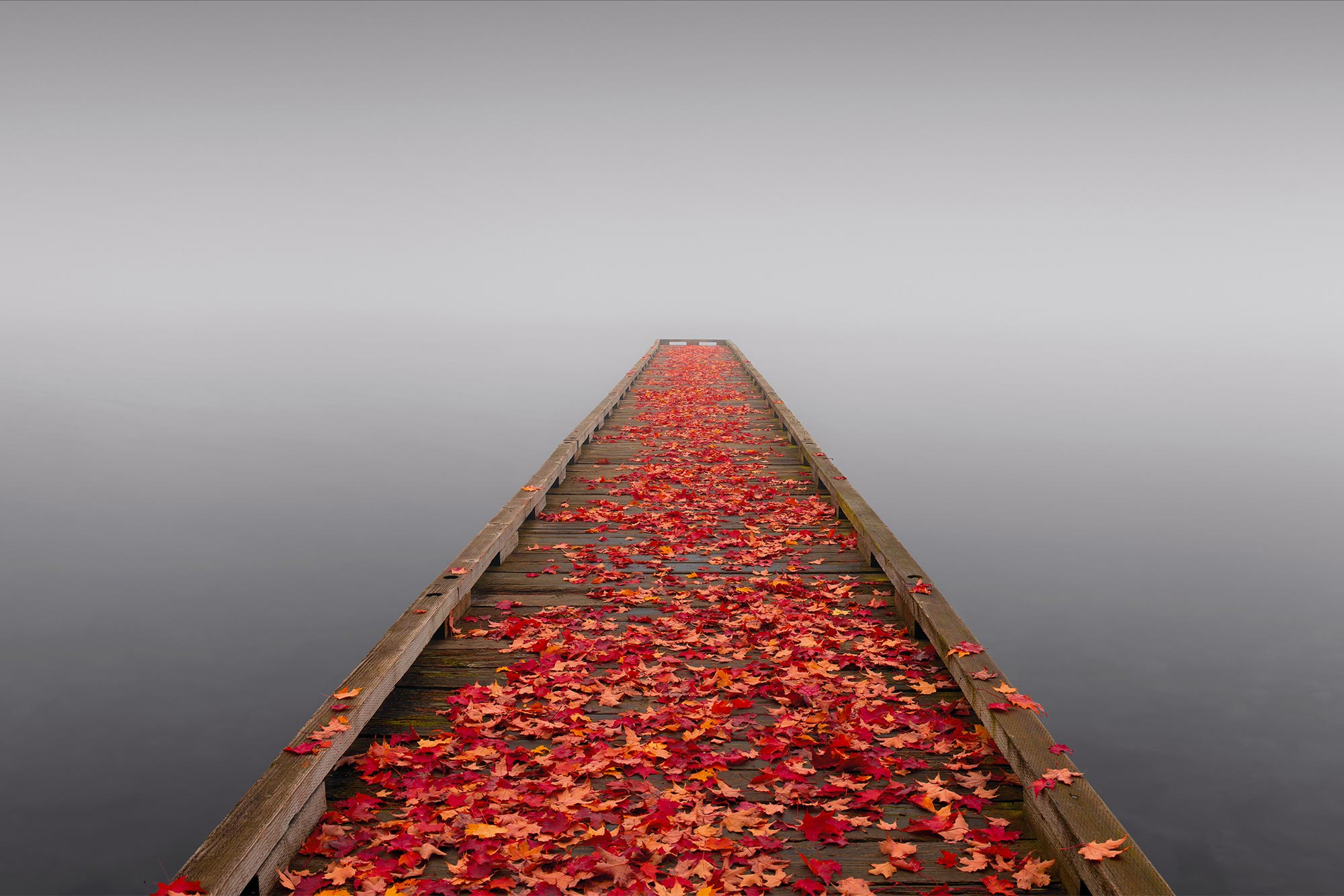 Fall Wallpaper With Blue Download Peter Lik Wallpaper Gallery
