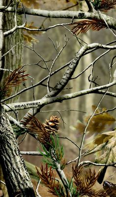 Download Realtree Camo Iphone Wallpaper Gallery