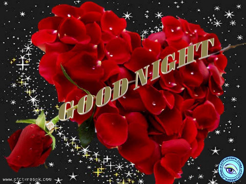 Most Popular 3d Live Wallpaper Download Red Rose Good Night Wallpaper Gallery