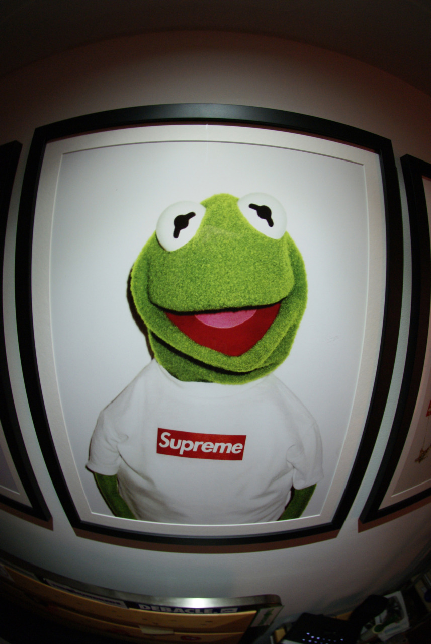 Supreme Wallpaper Girls Download Supreme Kermit Wallpaper Gallery