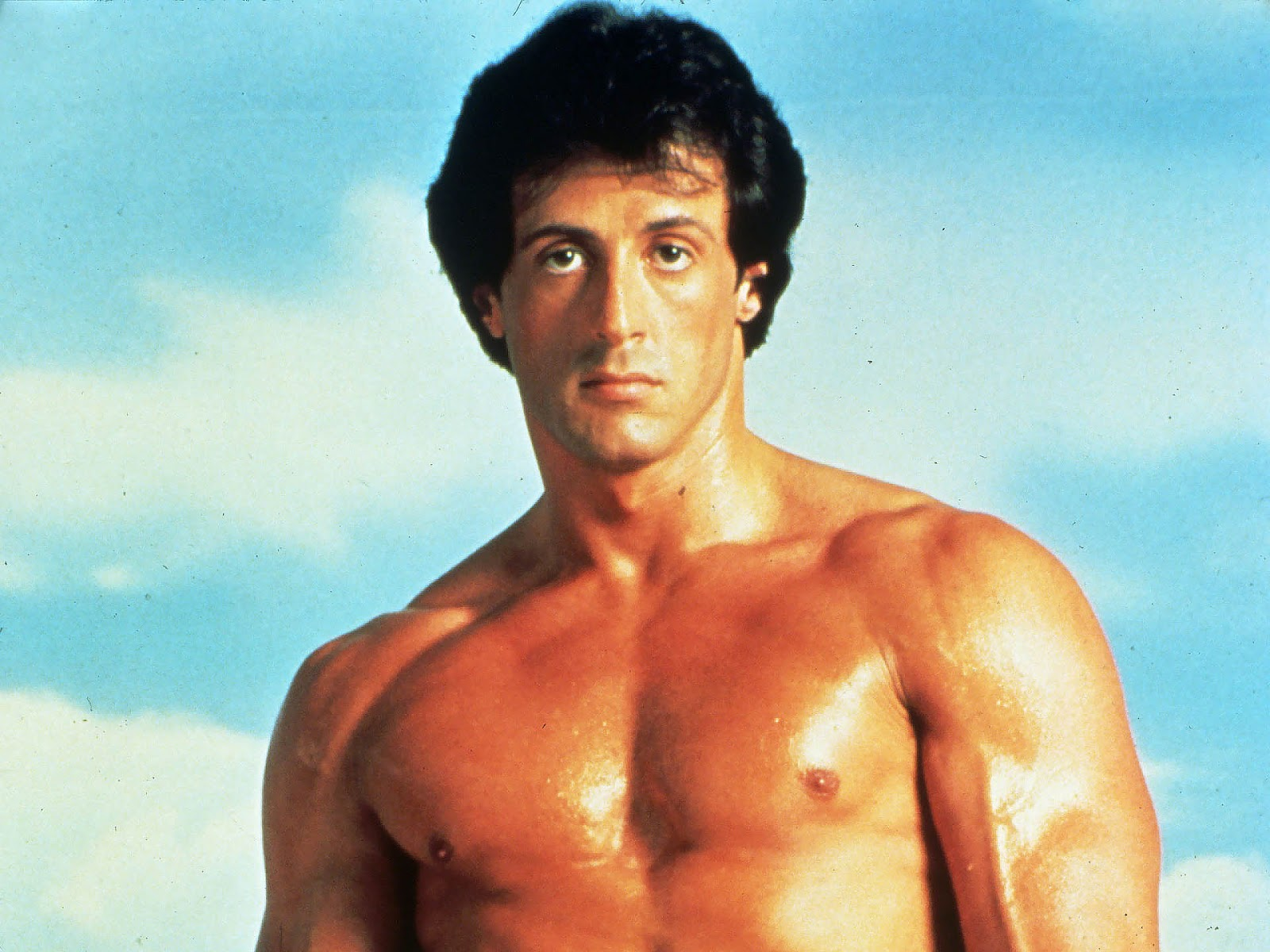 Arsenal Live Wallpaper Hd Download Sylvester Stallone Body Wallpapers Gallery