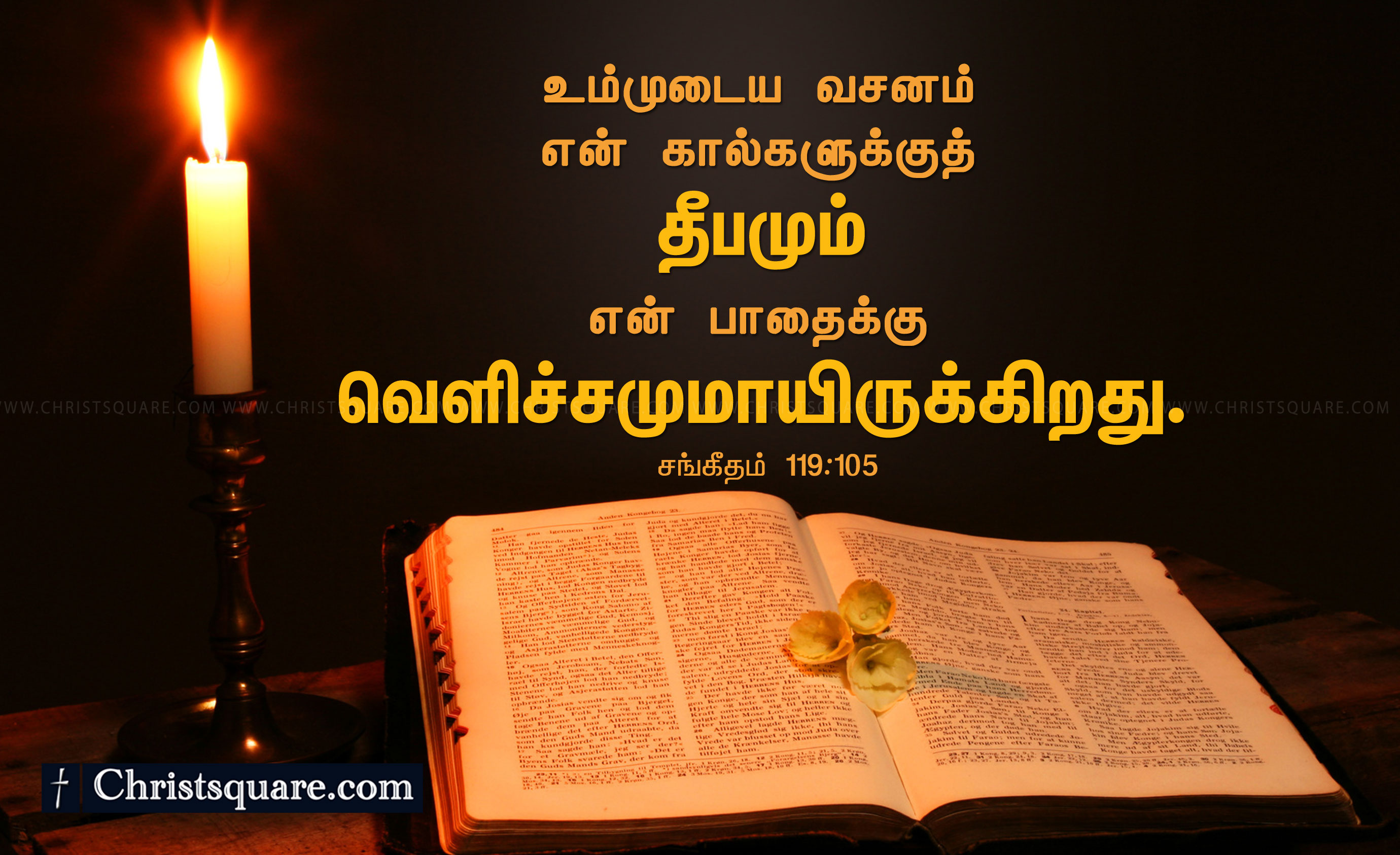 Motivational Sports Quotes Wallpaper Download Tamil Bible Words Wallpaper Gallery