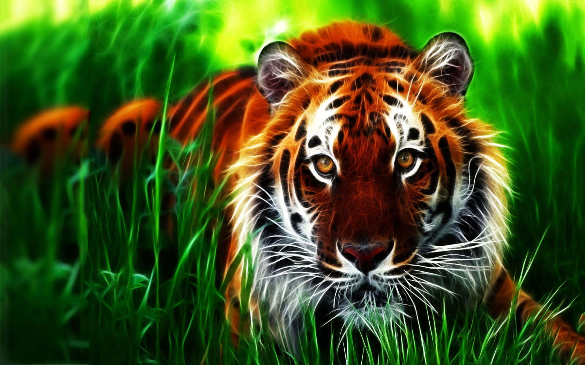 Lilly Pulitzer Fall Wallpaper Download Tiger 3d Wallpapers Free Download Gallery