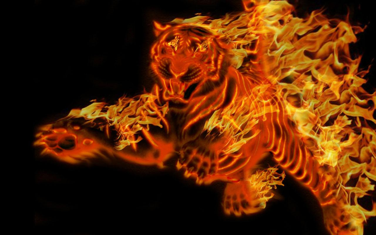 3d Live Wallpaper For Android Tablet Free Download Download Tiger 3d Wallpapers Free Download Gallery