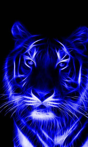 Black And White Phone Wallpaper Download Tiger Wallpaper For Android Gallery