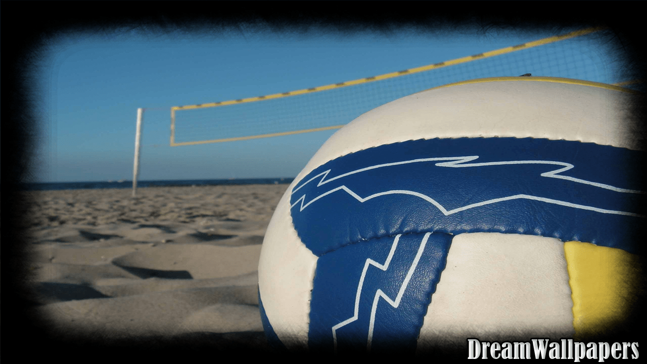 Buddha 3d Live Wallpaper Download Volleyball Wallpapers Free Download Gallery