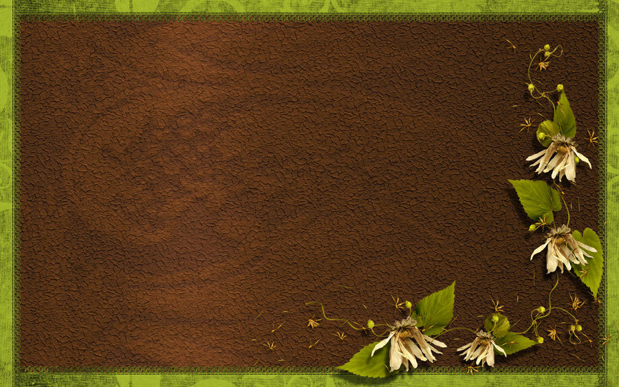 Fall Live Wallpaper Android Download Wallpaper Brown And Green Gallery