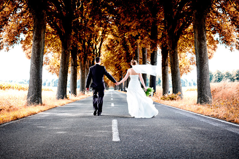 Free Fall Facebook Wallpaper Download Wedding Couple Wallpaper Gallery
