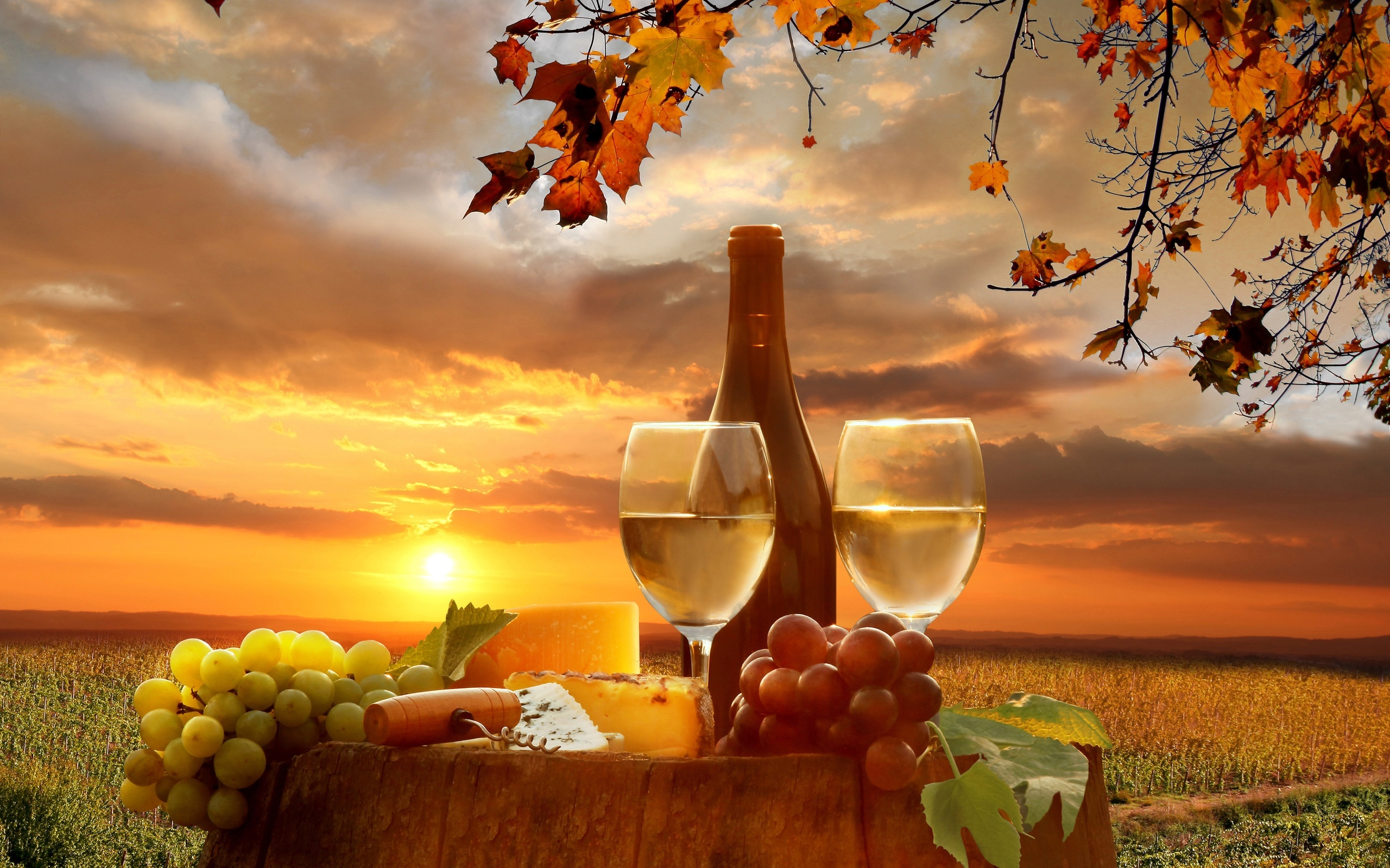 3d Car Live Wallpaper Free Download Download Winery Wallpaper Gallery