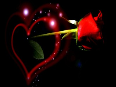 Download 3D Love Rose Wallpapers Gallery