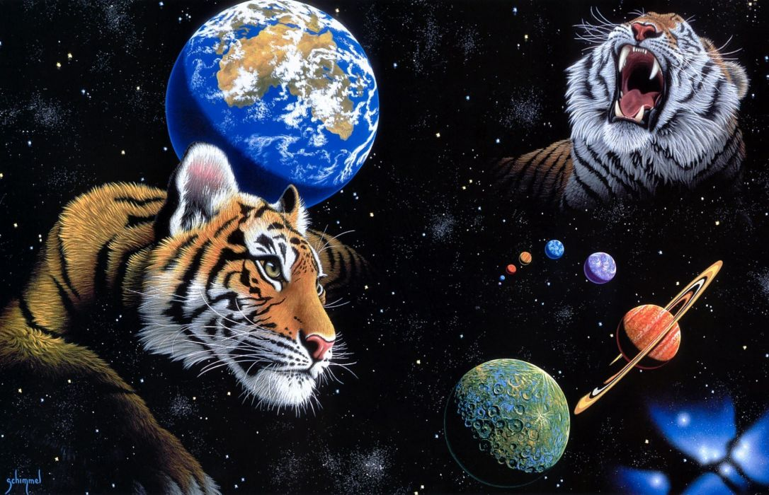 Earth And Moon 3d Wallpaper William Schimmel Schimmel Tigers Animals Sci Fi Space