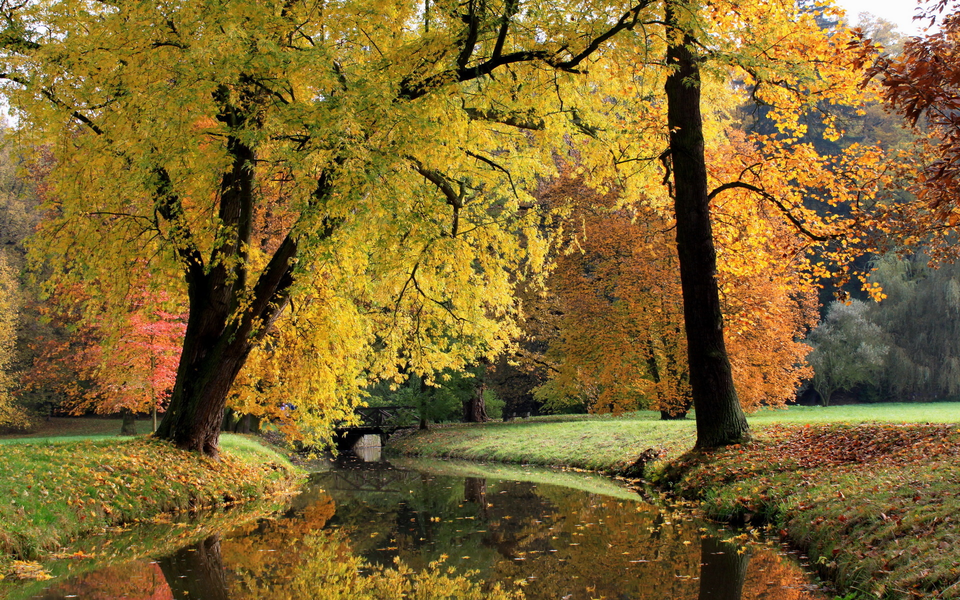 Fall Wooded Wallpaper Nature Landscapes Trees Canal Rivers Stream Waterway Water