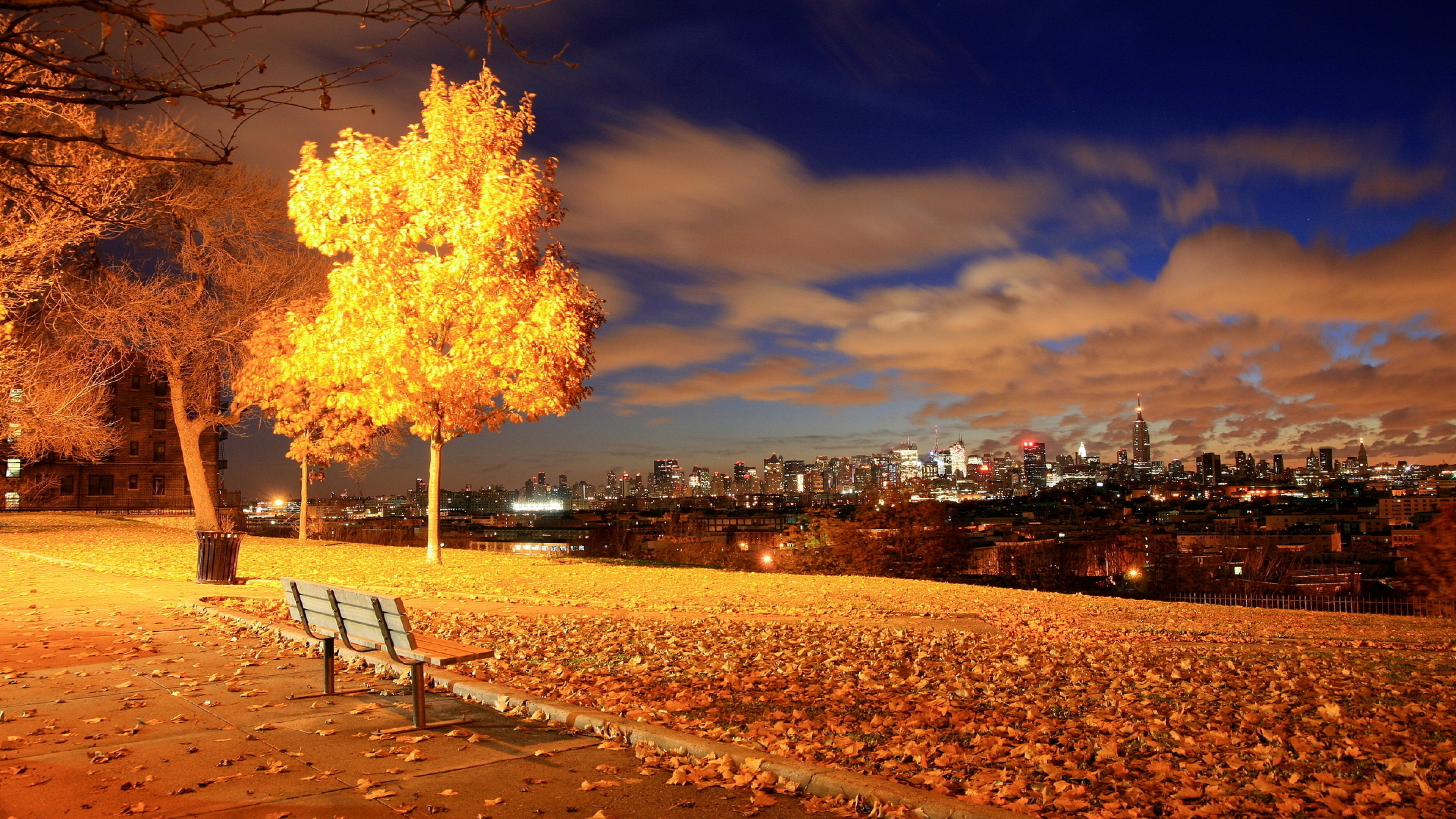 Pictures Of Fall Wallpapers Skyline Cityscape Nature Garden Park Bench Trees Night