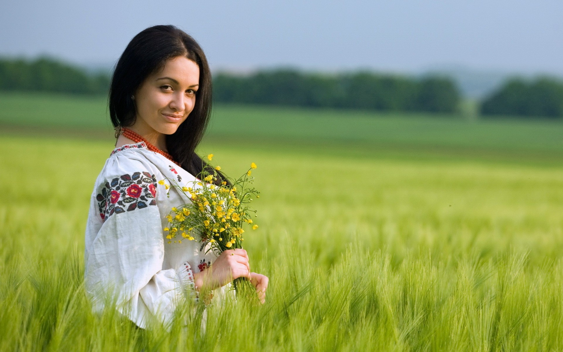 500 sel w126 engine f wallpaper 2048x1536 332128 wallpaperup - 500 Sel W126 Engine F Wallpaper 2048x1536 332128 Wallpaperup 14 Women Nature Grass Ukraine Wallpaper Download