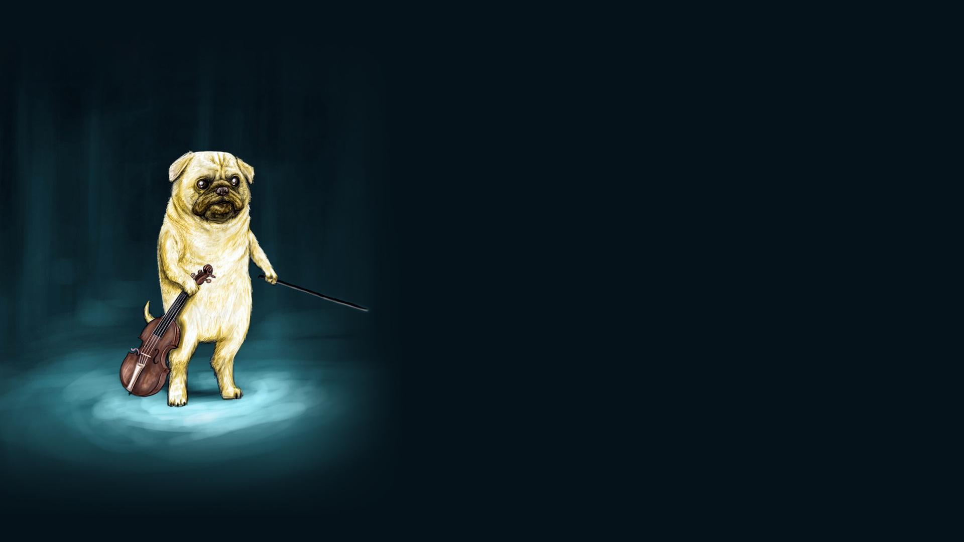 Niagara Falls Wallpaper Free Download Dog Violin Drawing Wtf Dogs Humor Funny Music Wallpaper