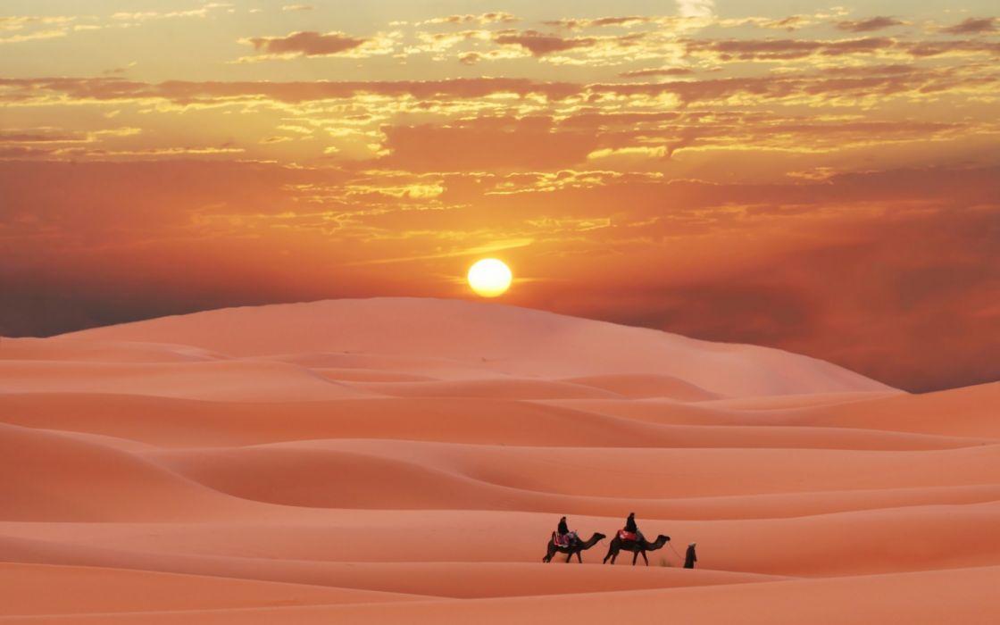 3d Nature Sunset Wallpaper Sahara Desert Morocco Berber Sunset Camel Sand Wallpaper
