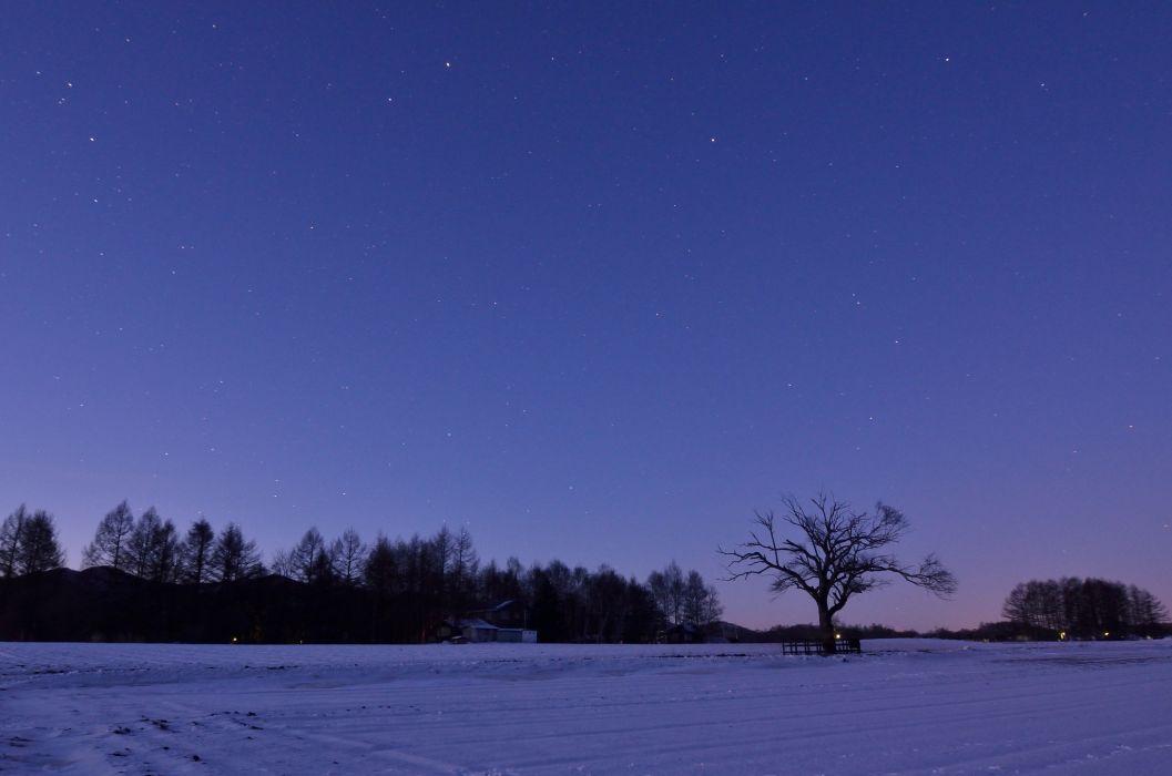 Fall Wallpaper Japan Japan Winter Field Trees Snow Night Lilac Sky Stars