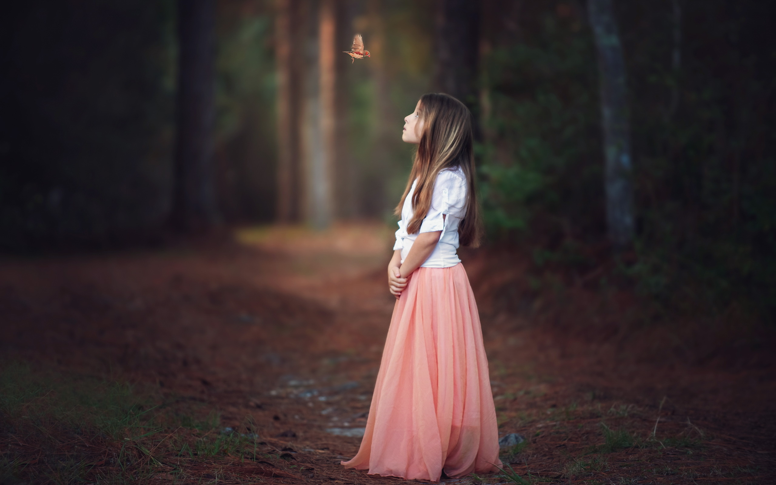 A Girl Sitting Alone Wallpapers Child A Girl Bird Forest Butterfly Mood Child Wallpaper