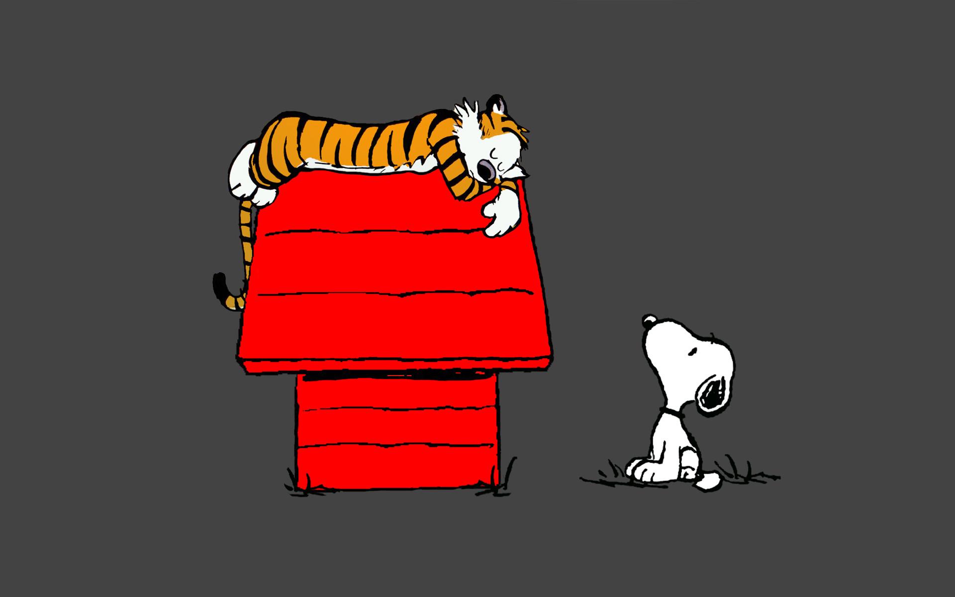 Calvin And Hobbes Fall Wallpaper Calvin And Hobbes Snoopy Sleep Peanuts Tiger Wallpaper