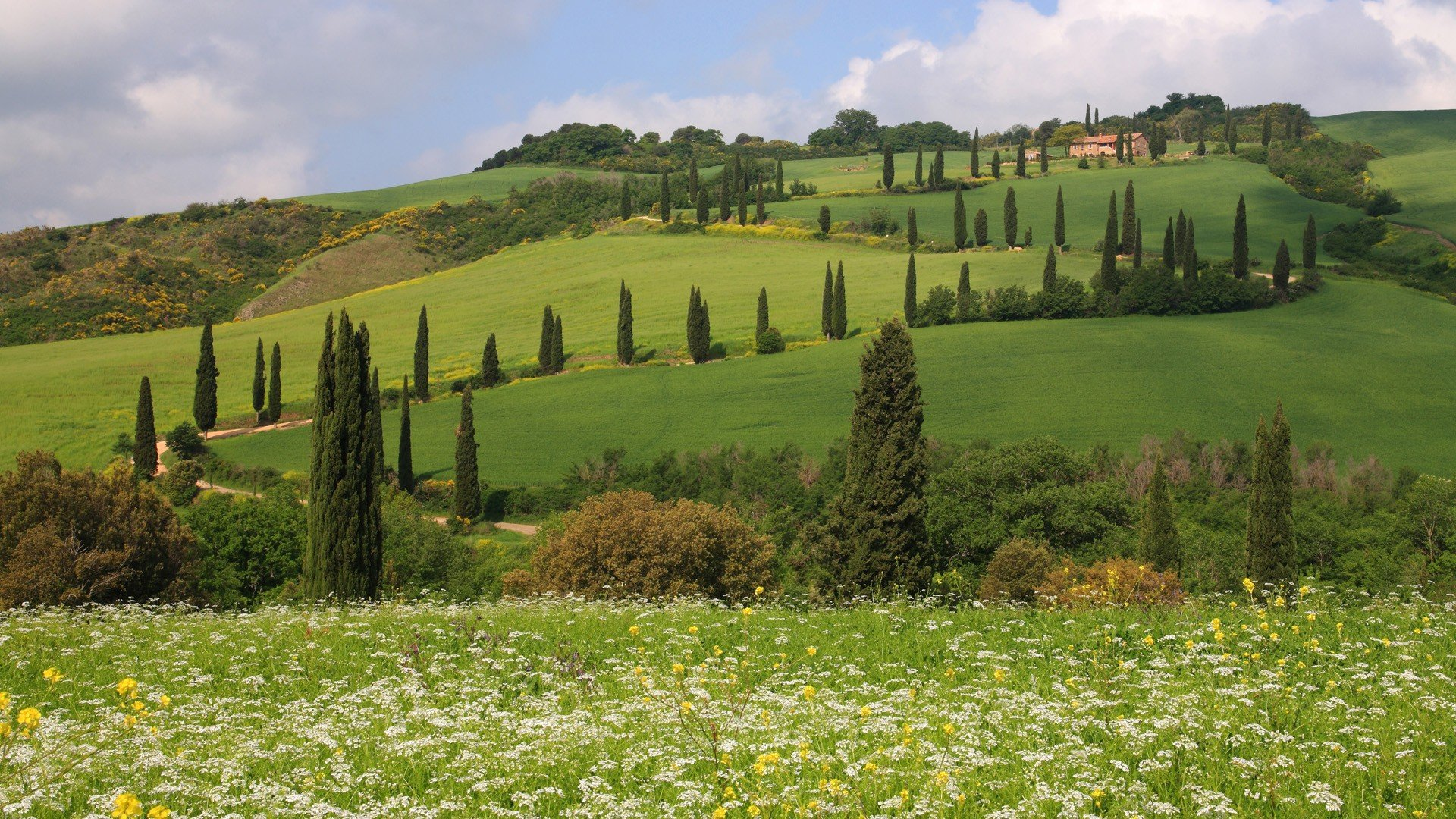 Ooty Hd Wallpapers Landscapes Hills Italy Siena Toscana Tuscany Monticchiello