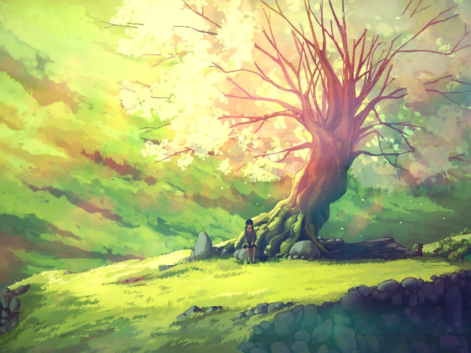Sad Girl Sitting Alone Hd Wallpapers Nature Trees Scenic Anime Girls Wallpaper 1600x1200