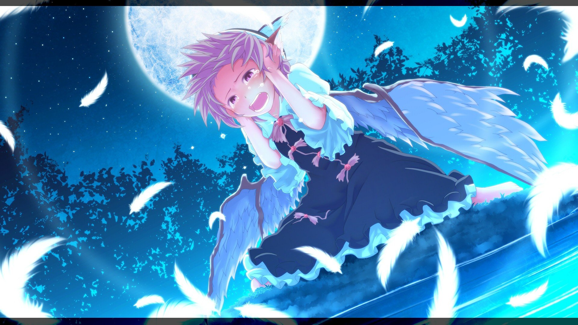 Pink Feathers Falling Wallpaper Water Video Games Touhou Wings Dress Night Stars Moon