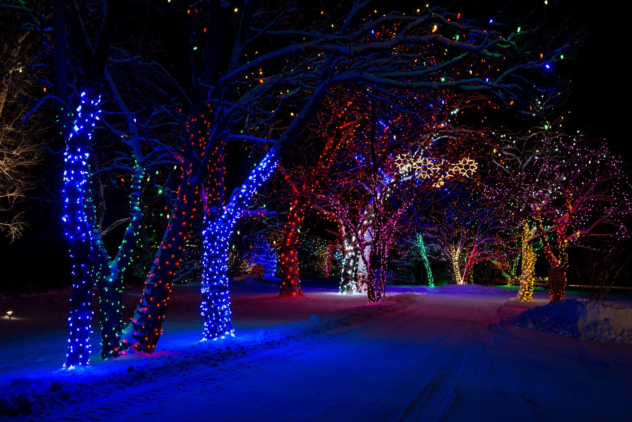 3d Snowy Cottage Animated Wallpaper Free Download Trees New Year Street Winter Snow Light Wallpaper