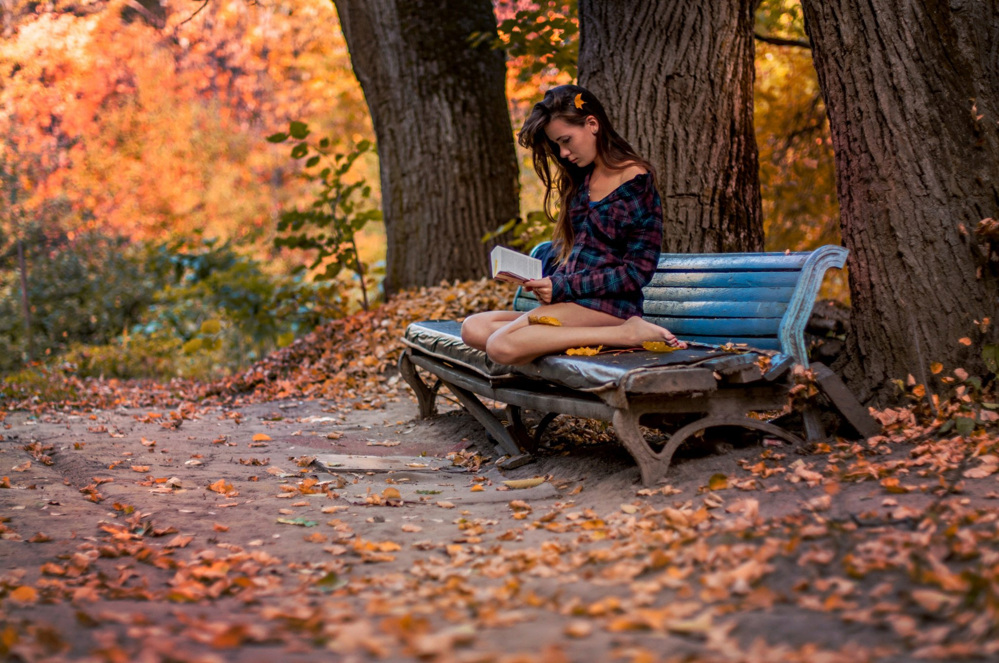 Girl Reading Book Wallpapers Autumn Park Girl Bench Book Wallpaper 2048x1360 470084