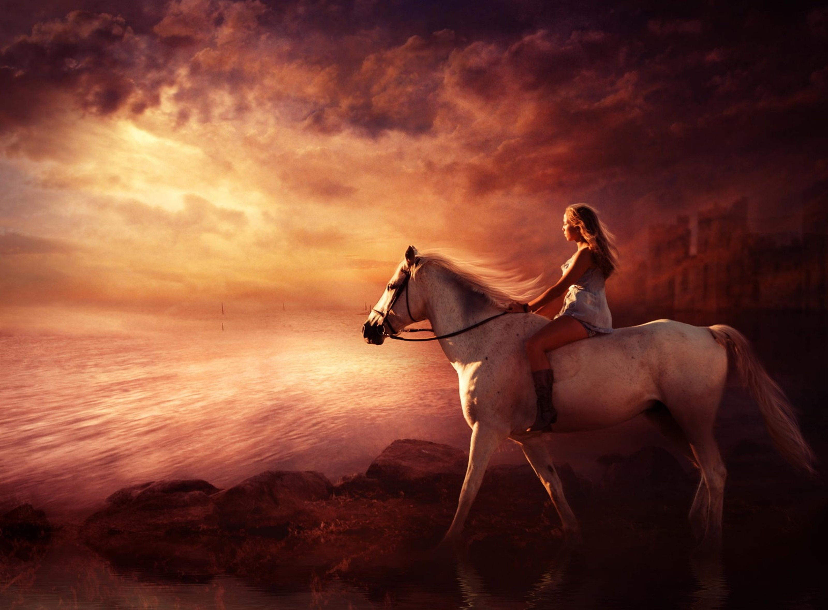 Beautiful Animal Pictures Wallpaper White Horse Animal Woman Wallpaper 3200x2360 482156