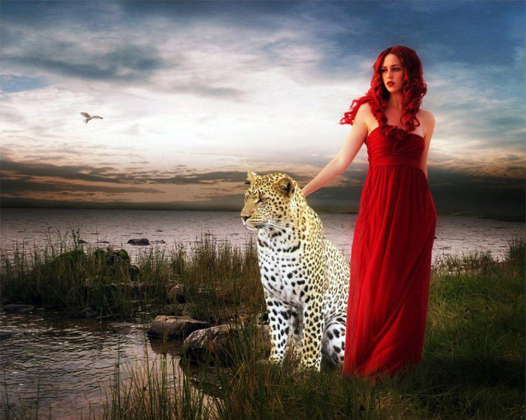 Girls Profile Wallpaper Red Tiger Fantasy Leopard Wild Lady Jessica Wallpaper