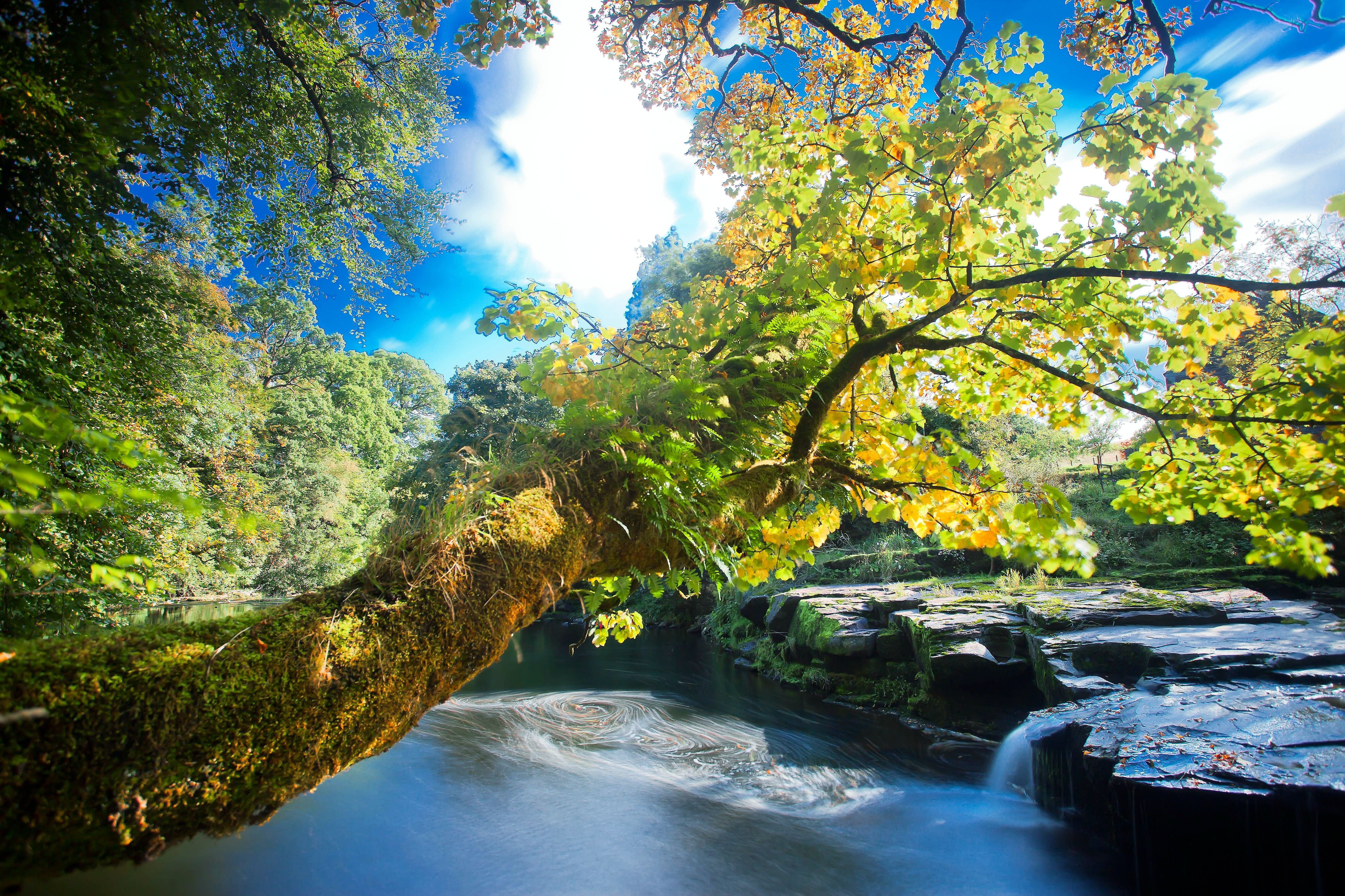 Hd Wallpapers For Windows 7 Download River Rocks Trees Waterfalls Autumn Nature Wallpaper
